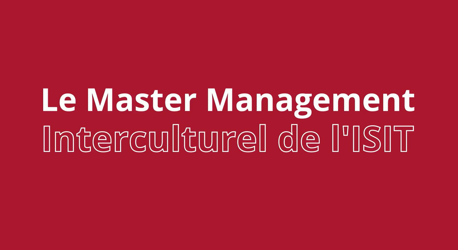 Discover ISIT's Master's degree in Intercultural Management